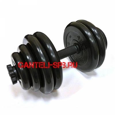 Разборные гантели MB BARBELL по 30 кг