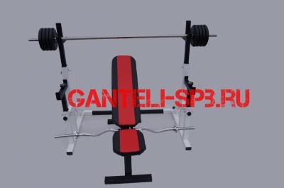 Комплект 100 кг со скамьей и стойкой со страховкой(вариант 3)