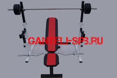 Комплект 100 кг со скамьей и стойкой со страховкой(вариант 1)