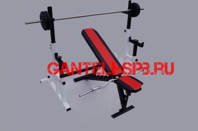 Комплект 85 кг со скамьей и стойкой со страховкой(вариант 1)