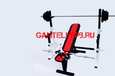 Комплект 70 кг со скамьей и стойкой со страховкой(вариант 2)