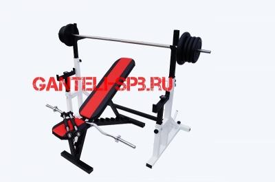 Комплект 70 кг со скамьей и стойкой со страховкой(вариант 4)