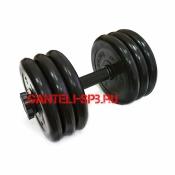 Гантели разборные MB BARBELL вес 32 кг