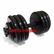 Гантели разборные MB BARBELL вес 35 кг