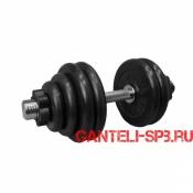 Гантель обрезиненная 34 кг. MB Barbell серия PRO D51