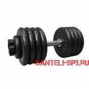 Гантель обрезиненная 49 кг. MB Barbell серия PRO D51