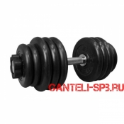 Гантель обрезиненная 46.5 кг. MB Barbell серия PRO D51