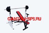 Комплект 80 кг со скамьей и стойкой со страховкой(вариант 2)